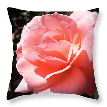 Summer Beauty Throw Pillow by Lucinda Walter
