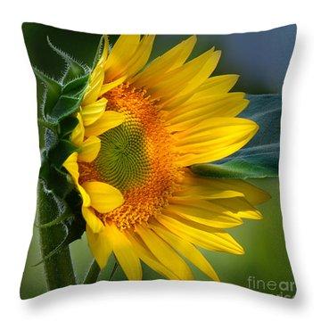 Summer Bonnet Throw Pillow