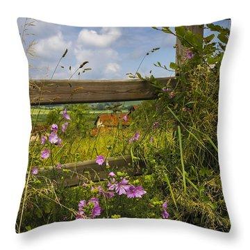 Summer Breeze Throw Pillow by Debra and Dave Vanderlaan