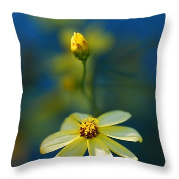 Summer Throw Pillow by Catherine Lau