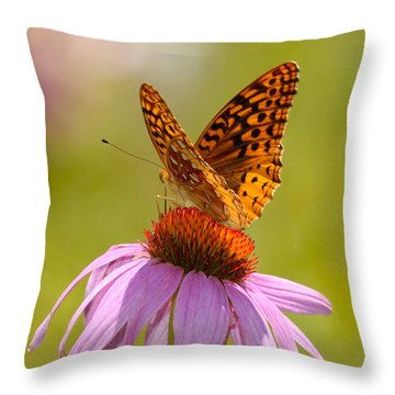 Summer Colors Butterfly Throw Pillow