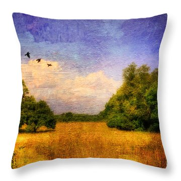 Summer Country Landscape Throw Pillow by Lois Bryan