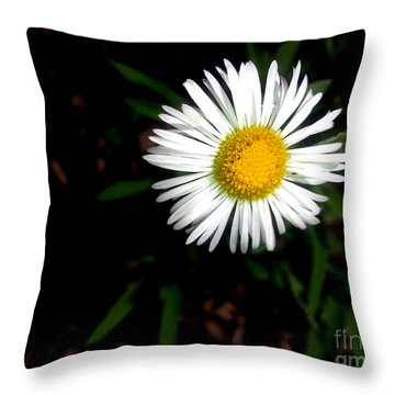 Summer Daisy Throw Pillow