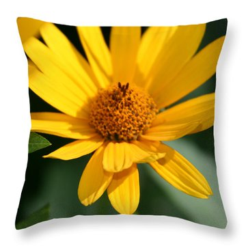 Summer Dance Throw Pillow by Denyse Duhaime
