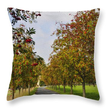 Summer Day In The Country Throw Pillow by Aged Pixel