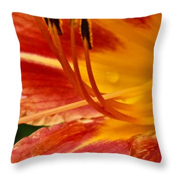 Summer Daylily Throw Pillow by Julie Andel