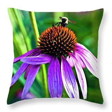 Summer Daze Throw Pillow by Steve Harrington