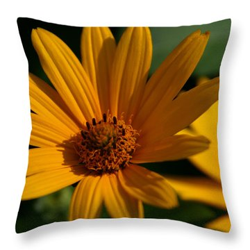 Summer Delight Throw Pillow by Denyse Duhaime
