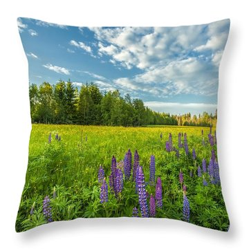 Summer Dream Throw Pillow by Rose-Maries Pictures