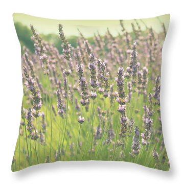 Throw Pillow featuring the photograph Summer Dreams by Lynn Sprowl