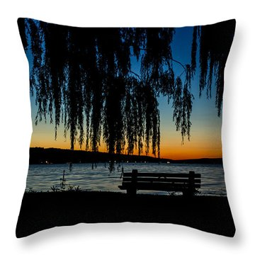Summer Evening At Stewart Park Throw Pillow