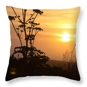 Summer Evening Throw Pillow