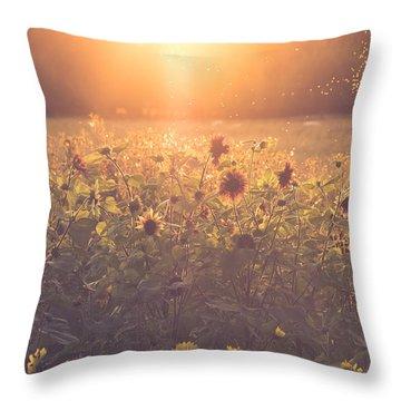 Summer Evening Throw Pillow by Chris Fletcher