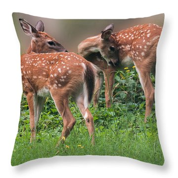 Summer Fawns Throw Pillow by Lara Ellis