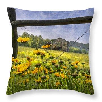 Summer Fields Throw Pillow by Debra and Dave Vanderlaan