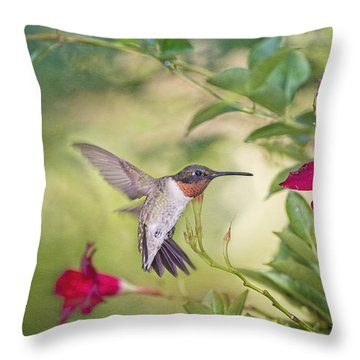 Summer Garden Hummingbird Throw Pillow