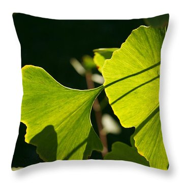 Throw Pillow featuring the photograph Summer Ginkgo Leaves by MM Anderson