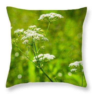 Summer Heat - Featured 3 Throw Pillow by Alexander Senin