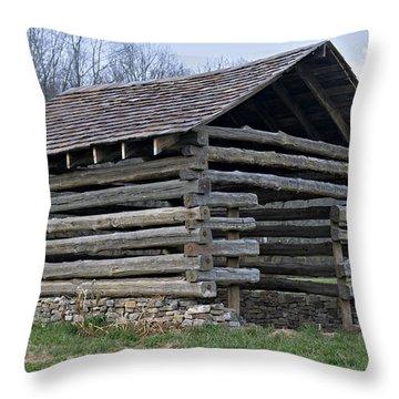 Summer Home Throw Pillow by Susan Leggett