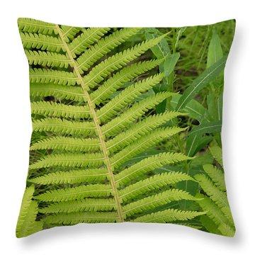 Summer In Alaska Throw Pillow