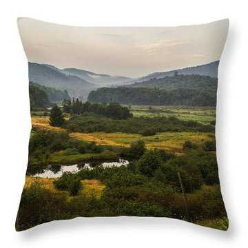 Throw Pillow featuring the photograph Summer In New York by Sue Smith