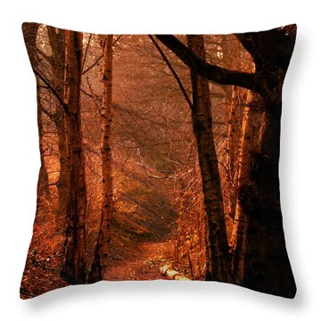 Summer In Sots Hole Throw Pillow