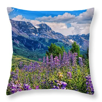 Summer In Telluride Throw Pillow