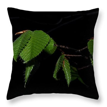 Summer Leaves On Black Throw Pillow