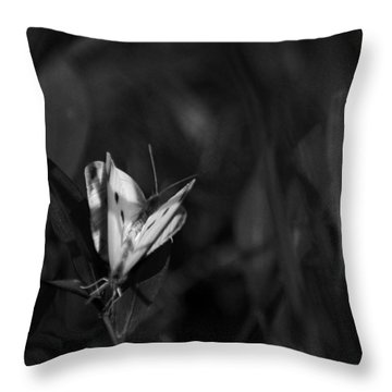 Summer Love Throw Pillow by Rebecca Sherman