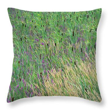 Throw Pillow featuring the photograph Summer Marsh by Alan L Graham