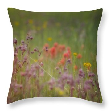 Throw Pillow featuring the photograph Summer Meadow by Ellen Heaverlo