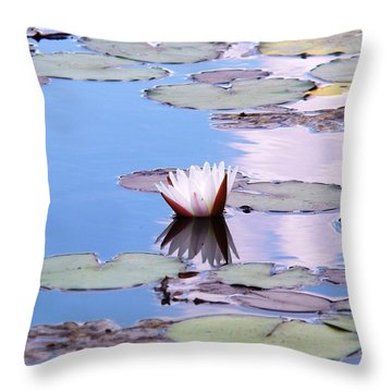 Moments Of Summer Throw Pillow