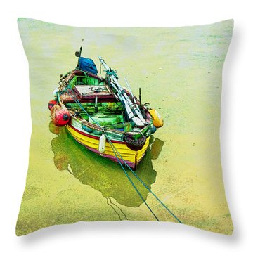 Throw Pillow featuring the photograph Summer Morning by Brian Tarr