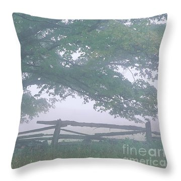 Throw Pillow featuring the photograph Summer Morning Fog by Alan L Graham