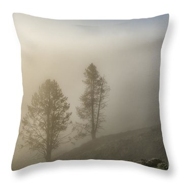 Summer Morning In Yellowstone Throw Pillow by Sandra Bronstein