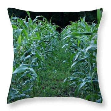 Summer Night Corn Rows Throw Pillow
