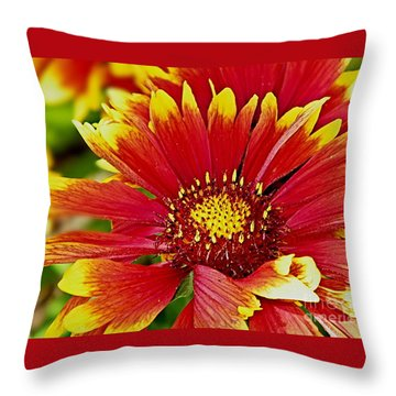 Throw Pillow featuring the photograph Summer Of Color by Ruth Jolly