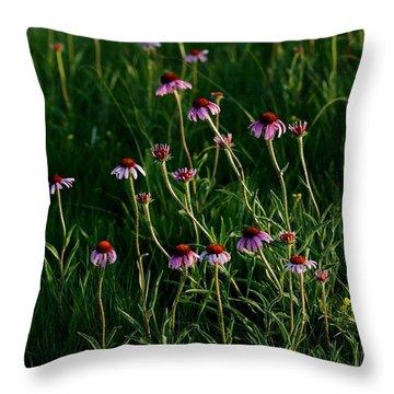 Summer Of Echinacea Throw Pillow
