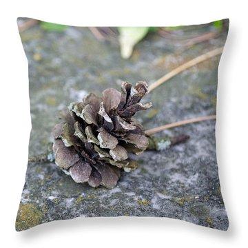 Summer Pinecone Throw Pillow