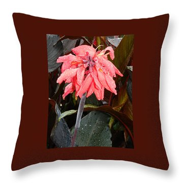 Throw Pillow featuring the photograph Summer Rain In Maryland by Emmy Marie Vickers