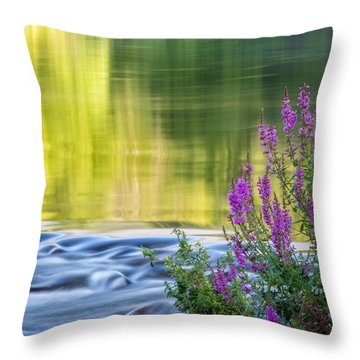 Summer Reflections Throw Pillow by Bill Wakeley