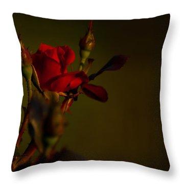 Summer Rose Throw Pillow by Mark Alder