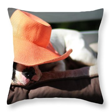 Summer Siesta Throw Pillow