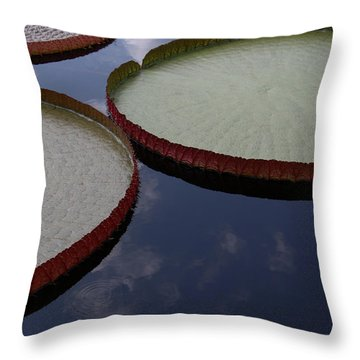 Summer Geometry Throw Pillow by Yvonne Wright