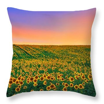 Summer Slumber Throw Pillow