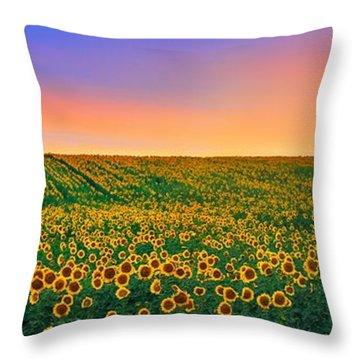 Summer Slumber Throw Pillow by Kadek Susanto