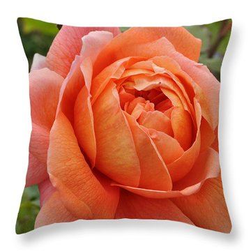 Throw Pillow featuring the photograph Summer Song by Sabine Edrissi