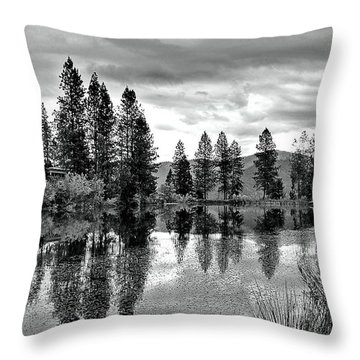 Throw Pillow featuring the photograph Summer Storm by Julia Hassett