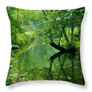 Summer Stream Throw Pillow by Melissa Petrey