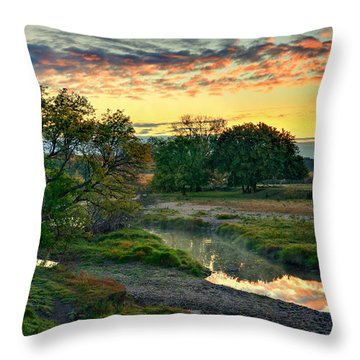 Summer Stream Sunrise Throw Pillow
